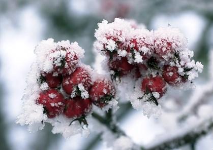Fortove og veje bliver glatte - vintervejret gør comeback