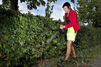 Afslappende havearbejde er ikke afslappende for havens dyreliv