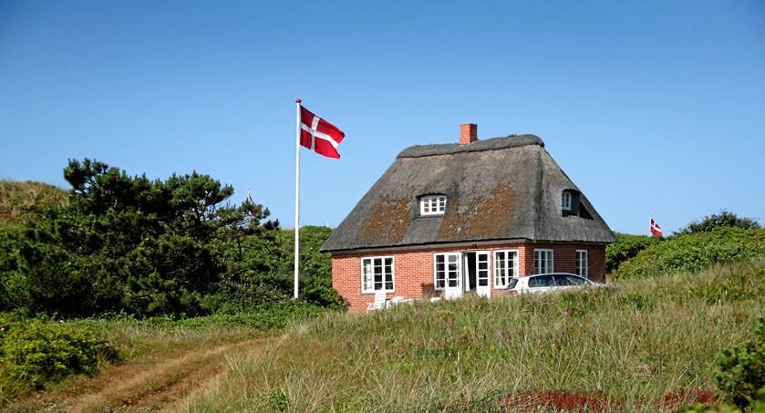 swinger chat høns til salg nordsjælland