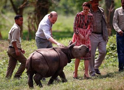 Indikationer viser, at Attitudes forside med prins William vil føre til rekordsalg