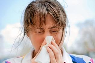 Støvmider kan medføre allergi, og vidste du, at der kan eksistere op mod 100.000 støvmider på blot én kvadratmeter af dit tæppe? Få tips til at undgå støvmider her