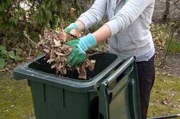 Det er på tide at gøre haven sommerklar og få luget ud i vinterens efterladenskaber. Colourbox