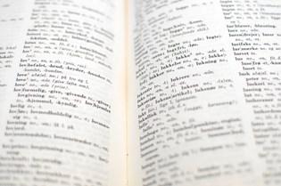 På kun et års tid er næsten 5000 nye ord optaget i nutidens store sproglige opslagsværk, og udviklingen fortsætter. Med til historien hører, at bogen nok er udkommet på tryk for sidste gang