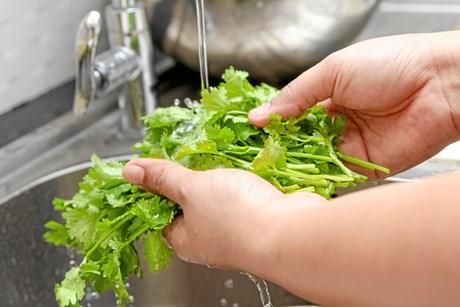 Vi ved godt, at vi skal spise flere grøntsager og flere urter, men det kan virke helt uoverskueligt, at trawle internettet og kogebøgerne igennem for at finde ny grøn inspiration. Heldigvis ligger den nemme løsning lige for