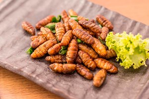 Insekter i madlavningen oplever stigende popularitet. Du skal dog være påpasselig med at spise insekter, hvis du er allergisk over for skaldyr eller husstøvmider.