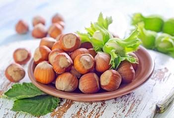 Vilde urter, sprøde æbler, saftige svampe og syrlig havtorn er bare nogle af de ting, du kan få fingrene i ganske gratis, hvis du har mod på at tage på sanketur.