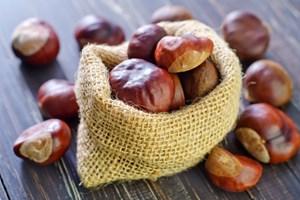 Den rødbrune nød er især en velsmagende komponent til svampe i det salte køkken og chokolade i det søde køkken. Her er syv sublime opskrifter.