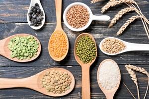 Spiser du masser af ris, så overvej at supplere med nogle af de lækre og mere klimavenlige alternativer.