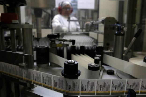 Rio de Janeiro forbereder massevaccination mod gul feber | Nordjyske.dk