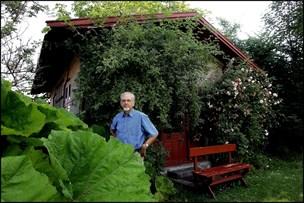 Lille lysthus i Bies Have bør genopføres