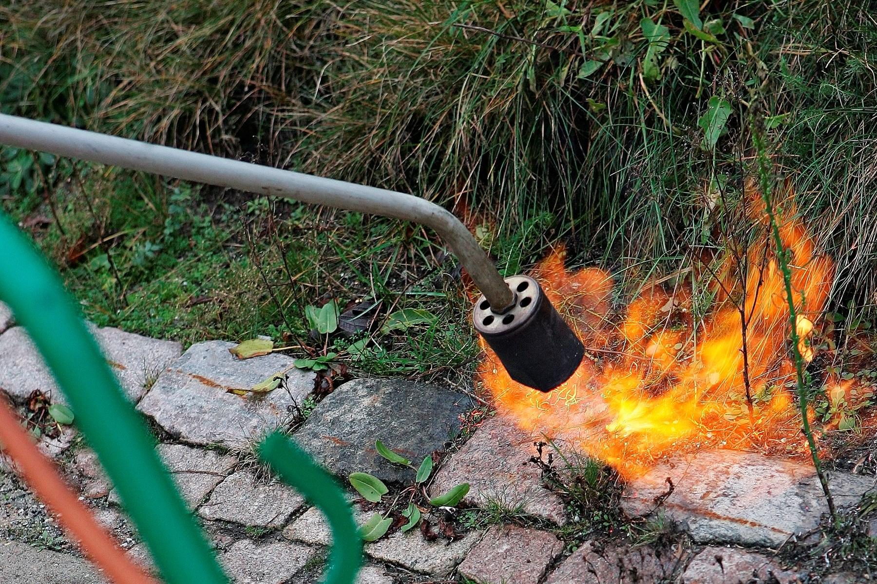 Ukrudtsbrænder satte ild til udestue