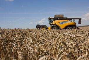 Høje jordpriser og dyre gårde får landmænd til at leje