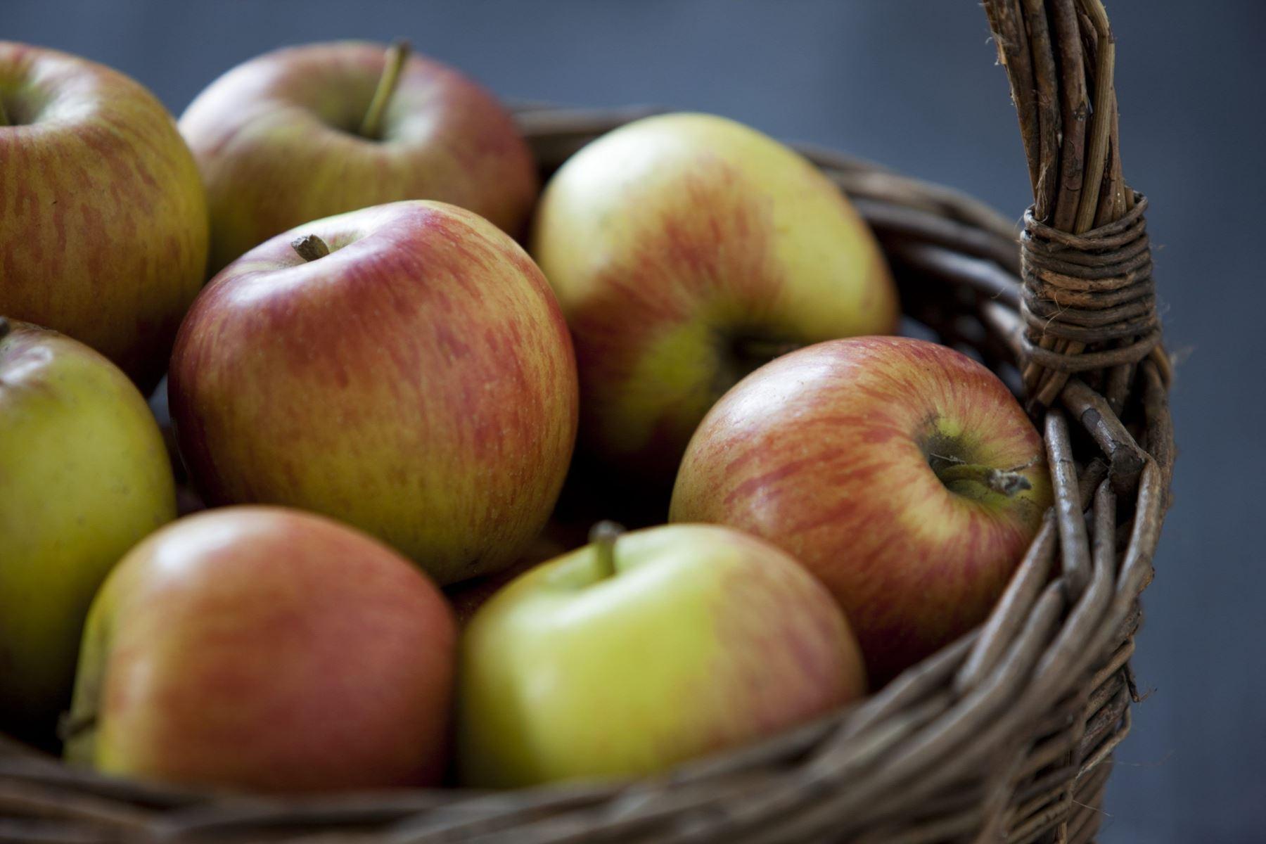 Frost giver faldt i høsten af æbler, pærer og bær. Flere lande i Europa er ramt, oplyser Dansk Gartneri.