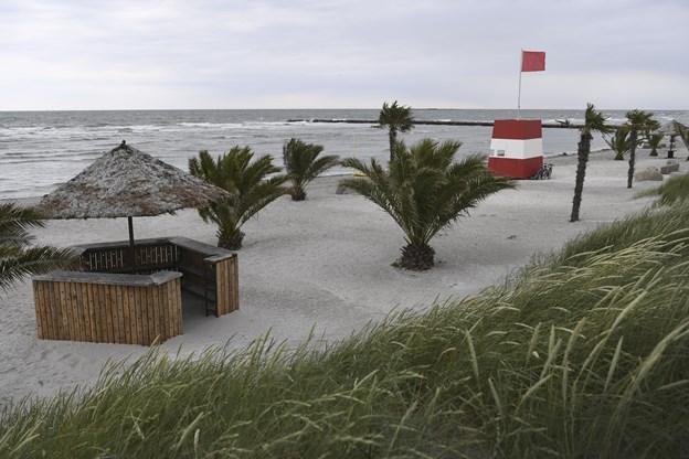 Uro på palmestrand - to unge anholdt | Nordjyske.dk