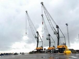 Aalborg Havn leverer hvert tiende job i Aalborg Kommune