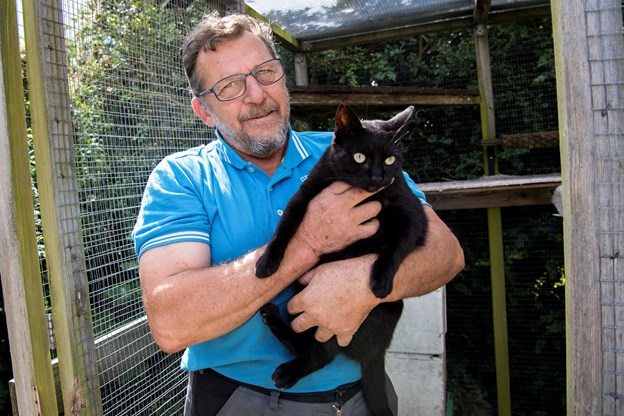 Nu er problemet med vilde katte løst i Sørup