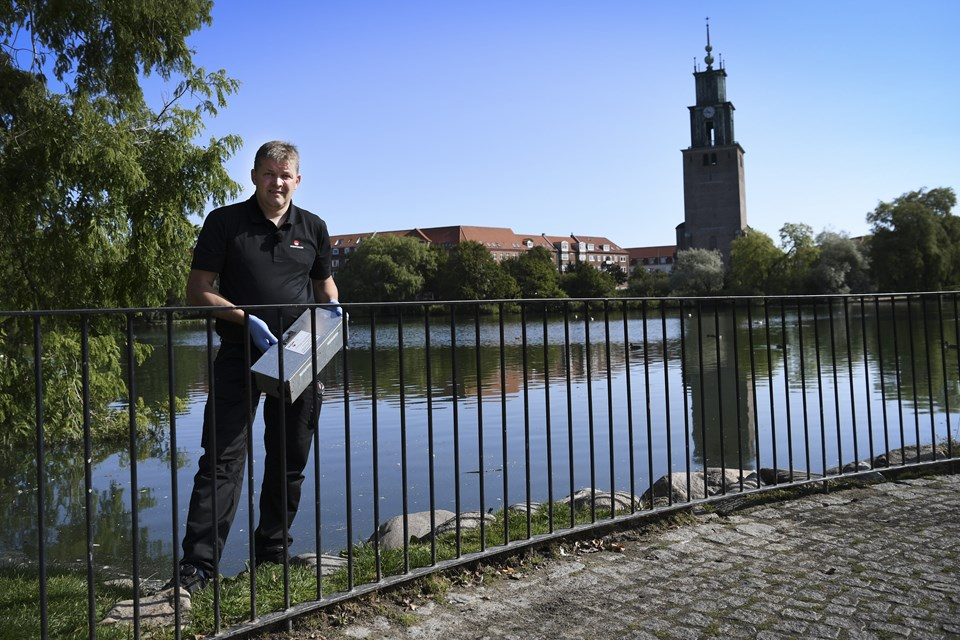 Karsten Thomsen fra Mortalin - der her er fotograferet i Østre Anlæg - er leder for ansatte, der skal bekæmpe rotterne i Aalborg Kommune. Han oplyser, at to rotter i løbet af et års tid kan blive til 900 eksemplarer i løbet af et års tid, hvis betingelserne er optimale.