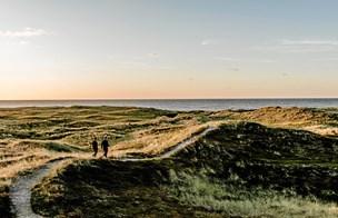 Danmarks rygrad fremfor »Udkantsdanmark«
