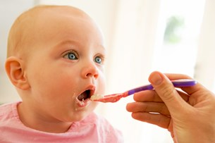 Fædre er klar med produktion af økologisk babymad
