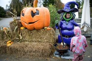 SE Billederne: Hugo og Halloween hitter
