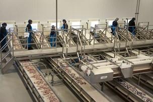FF Skagen køber sildeproducent