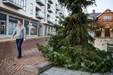 Danmarks grimmeste juletræ står til udskiftning