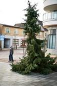 Det grimmeste juletræ kommer hele landet rundt
