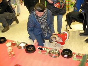 Julefrokost for hunde