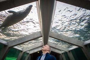 Karl Henrik passer 6500 dyr i Nordeuropas største akvarium