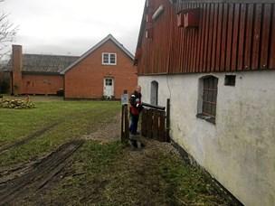 Dyr hjælper mennesker i Farstrup