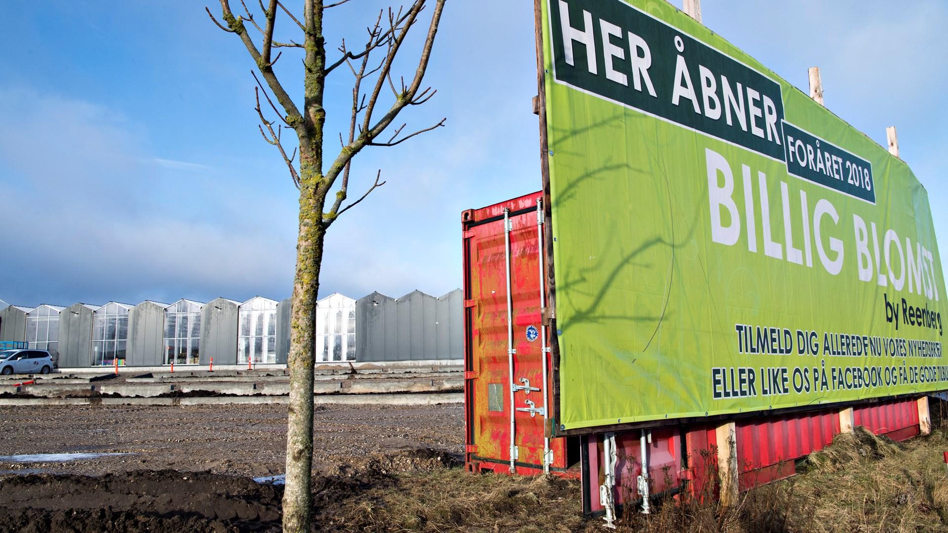 BilligBlomst åbner i Aalborg