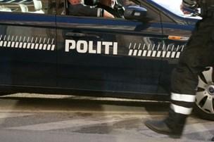Fuld tyv kravlede over hegn til politistation