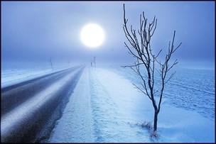 DMI advarer: Tæt tåge på vej