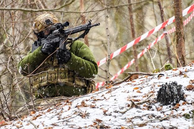 Søndage i ulige uger: Drengerøve leger krig i Tolne skov