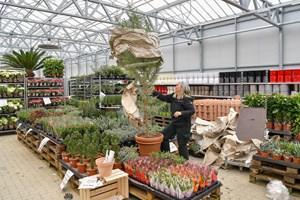 Se billederne: BilligBlomst er klar til at åbne