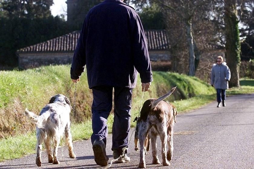 Når hunden prøver at vise, at den føler sig truet, skal man ikke overtræde dens grænse. I stedet skal man ignorere den, fortæller to dyreadfærdsterapeuter.
