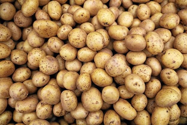 Lækre kartofler. Foto: Lasse Sand
