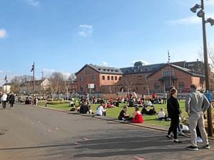 7 steder hvor du kan nyde solen i Aalborg