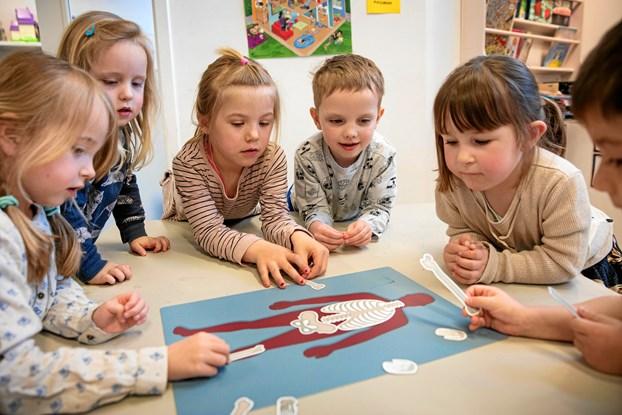Børnehavebørn i naturvidenskabens verden