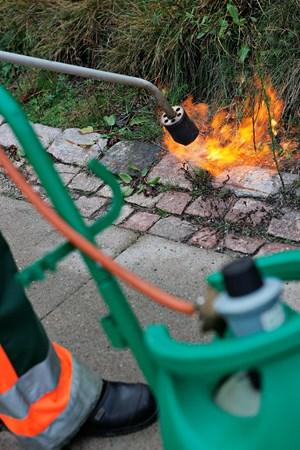 1540 brande er de seneste 10 år opstået på grund af ukrudtsbrændere - forsikringsselskab advarer