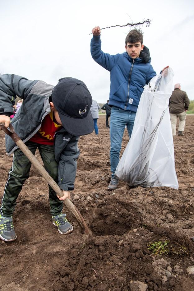 Eleverne havde set frem til plantedagen og udførte arbejdet med stor arbejdsiver.
