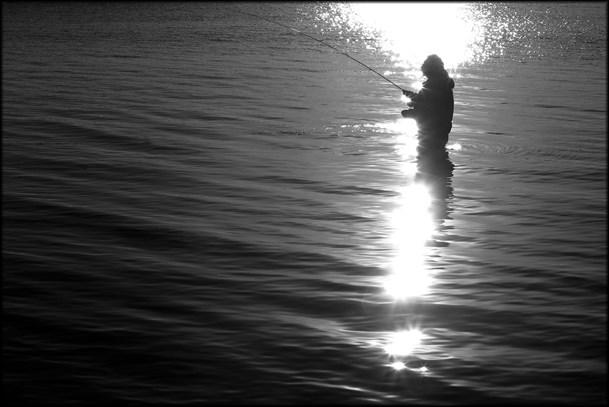 Frem med fiskestangen: Sportsfiskere lærer fra sig ved Sildehagen