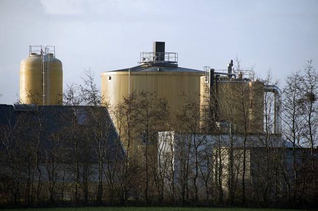 Nu skal biogasanlæg løse lugtproblemer: Der skal låg på græsset