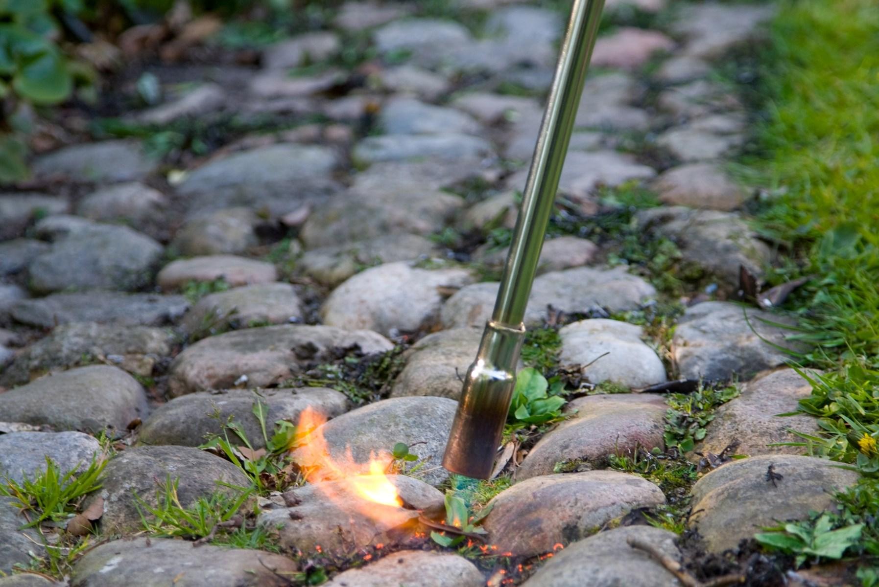 Ukrudtsbrænder: Skalborg-villa millimeter fra at brænde ned