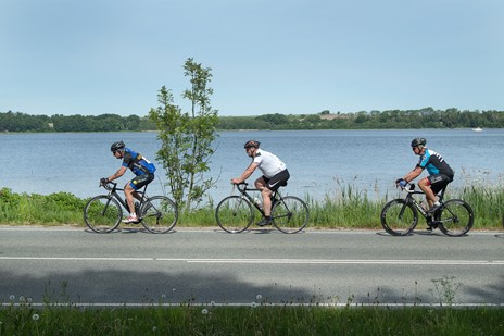 Cyklister på sol-tour i fjordkanten