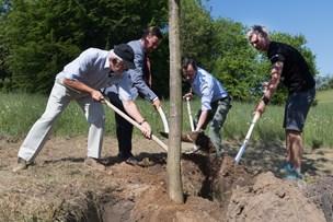 """Forsømt skov forvandles til naturparadis: """"Det kommer til at koste lidt"""""""