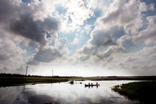 Giftstoffer hældt i sø: Fisk kan være forgiftede