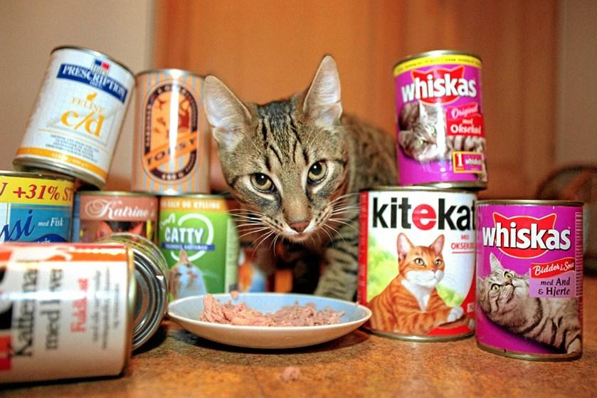 Ernæringen fejler ikke noget, når du køber mad til dit kæledyr i supermarkedet, men vil du have ensartet foder og kvalitet, skal du til dyrlægen.