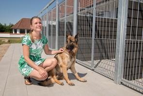 Nyt hundehotel i Brønderslev