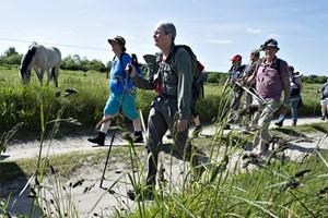 Start med at gå fem til ti kilometer i dit nærområde, og husk creme, reservesokker og en nål, lyder det fra eventyreren Erik B. Jørgensen.